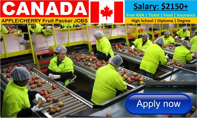 Apple Packing Jobs Archives - Job Careers