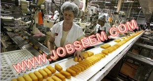Bread Factory Process Worker Wanted in AUSTRALIA 2018