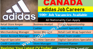 Accounting Jobs Archives - Job Careers