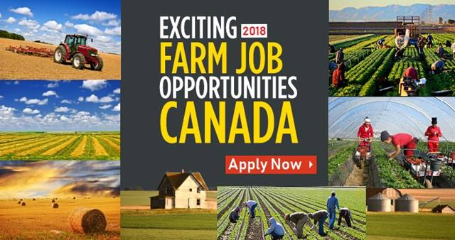 Farm Worker Jobs in Canada for Foreigners 2018 With Salary | Farm